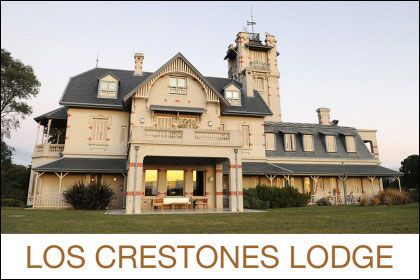 David Denies Los Crestones