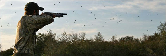 More Uruguay dove shooting